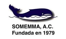 somemma_1